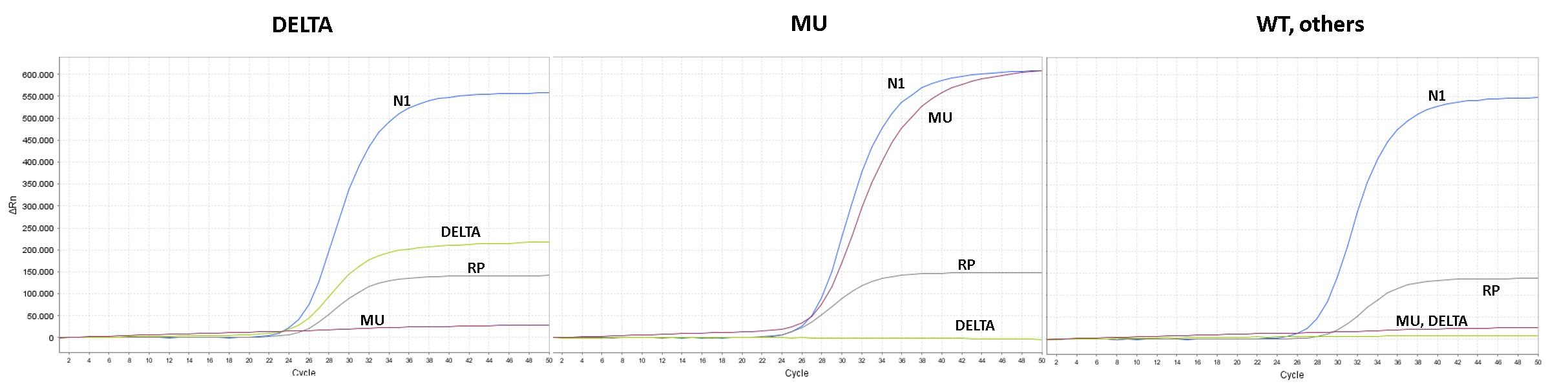 PCR test for Mu variant